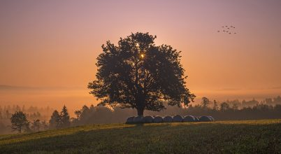 A nap képe: Pirkadat