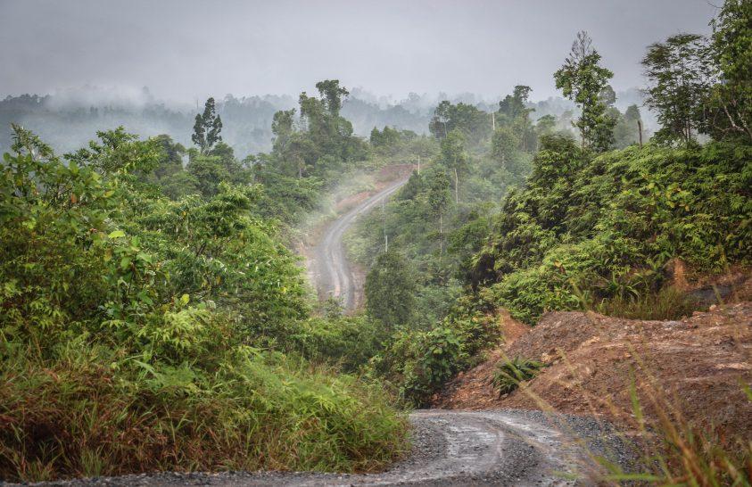 Hajdani fejvadászok földjén, Sarawakon