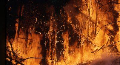 Afrikát is tüzek pusztítják