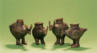 Már a bronzkori csecsemőket is táplálták állati tejjel