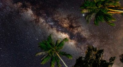 2019. szeptember asztrofotója: A dzsungel csillagai