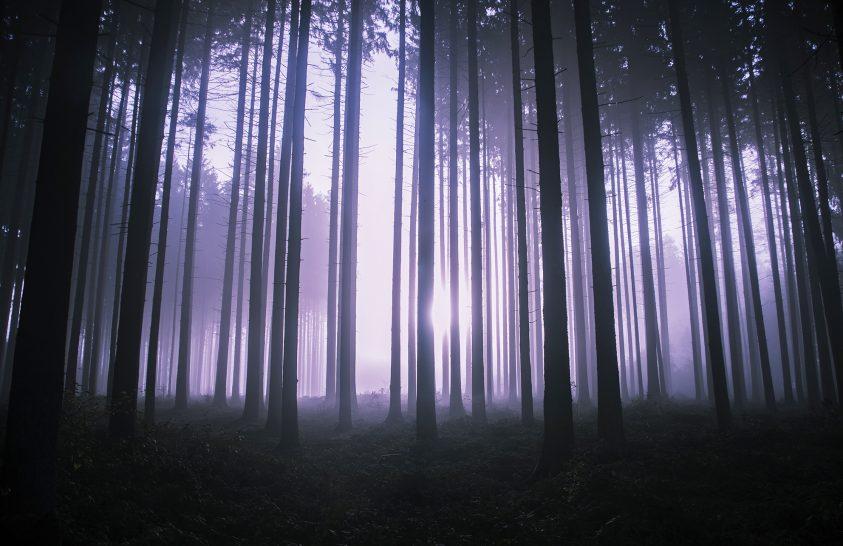 A nap képe: Misztikum