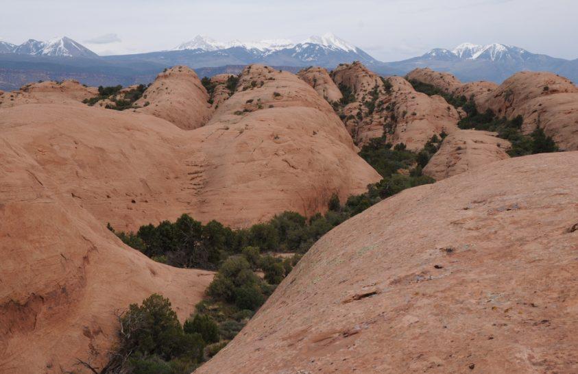 Dinoszauruszok itatóiból származó kőzeteket vizsgáltak