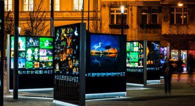 Szabadtéri kiállítás Máté Bence fotóiból Budapesten
