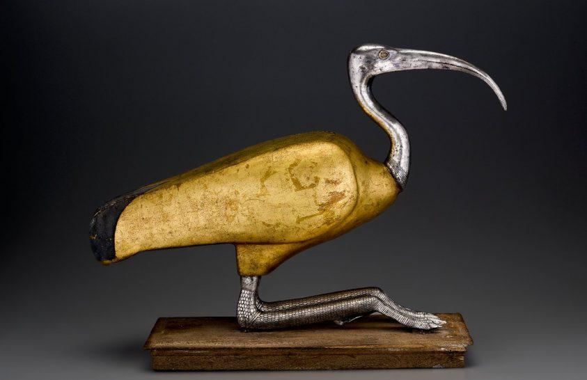 Vadon befogott íbiszeket mumifikáltak az ókori egyiptomiak
