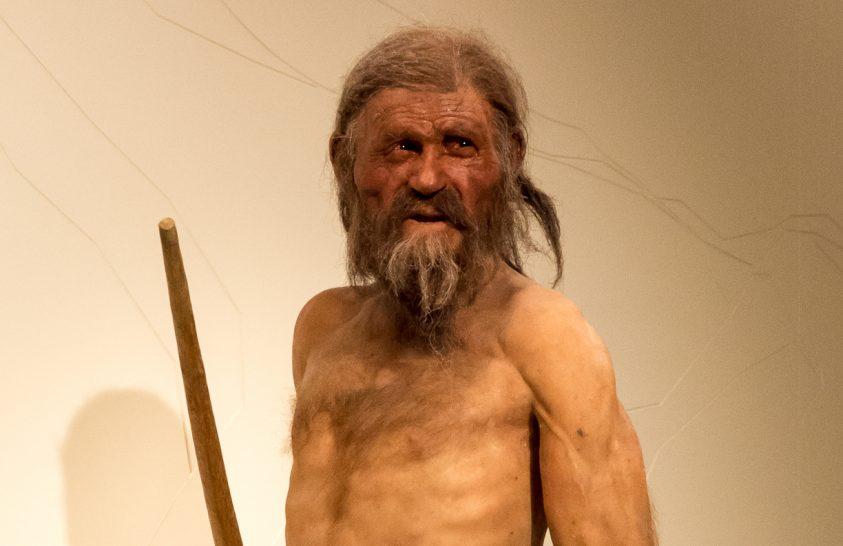 Növények árulkodnak Ötzi utolsó útjáról
