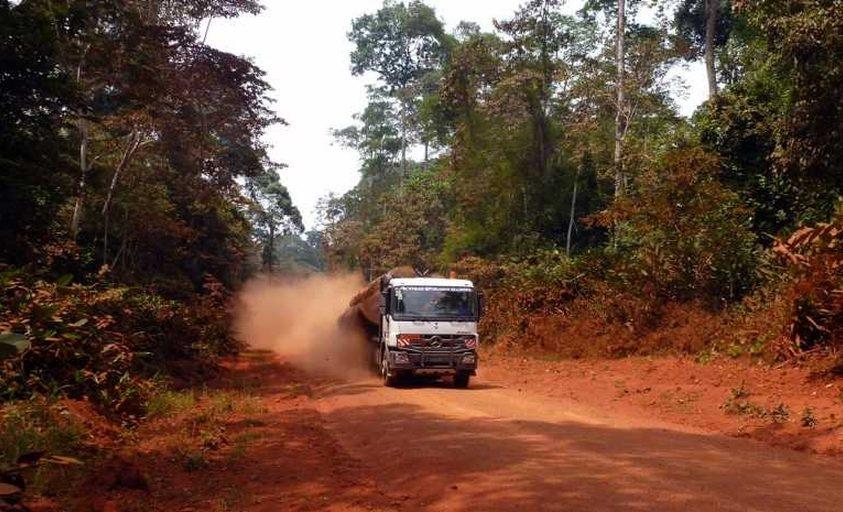 Kapcsolat az útépítés és az erdőirtás közt Afrikában