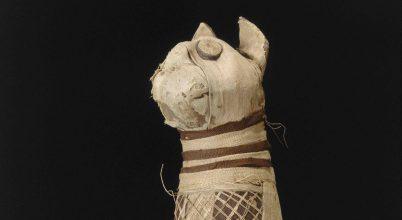 Meglepetést okozott az ókori macskamúmia