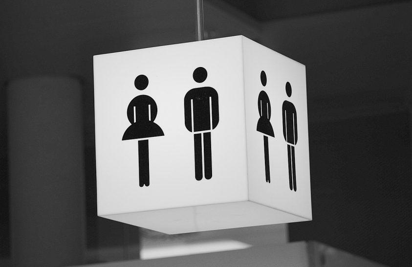 Húzós kérdés: hogy spóroljunk a WC-n elhasznált vízzel?