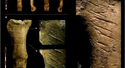 Ez lehetett az utolsó neandervölgyi nyakék