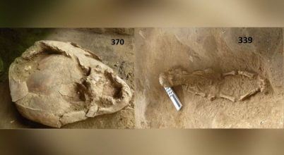 Bizarr temetkezési szokásra találtak bizonyítékot