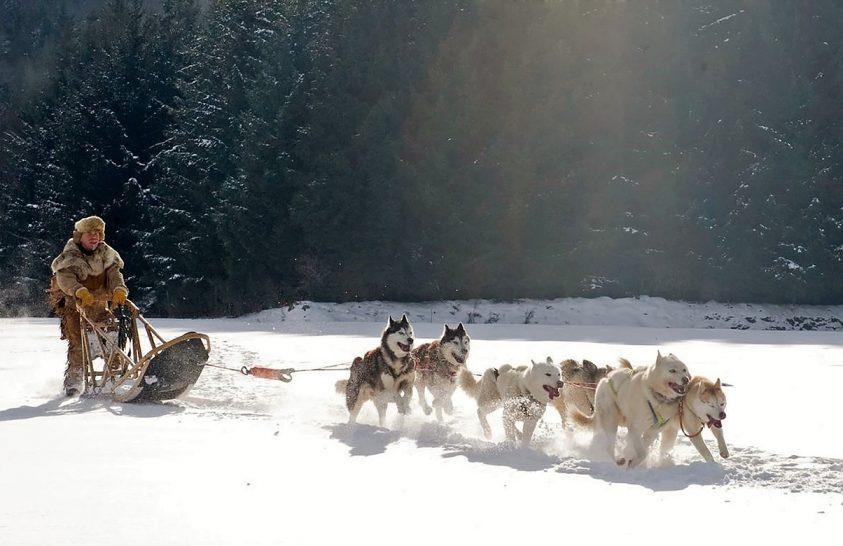 Különleges kutyáiknak köszönhették a sikert az inuitok