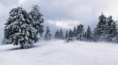 Hóvihar a Hargitán