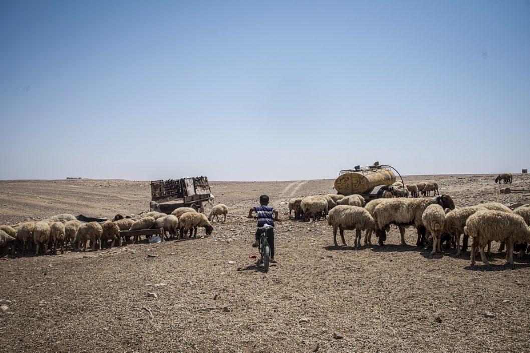 Magyar fotóriporter sikere Izrael legrangosabb fotóversenyén | National Geographic