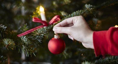 Miért pont fenyőt díszítünk karácsonykor?