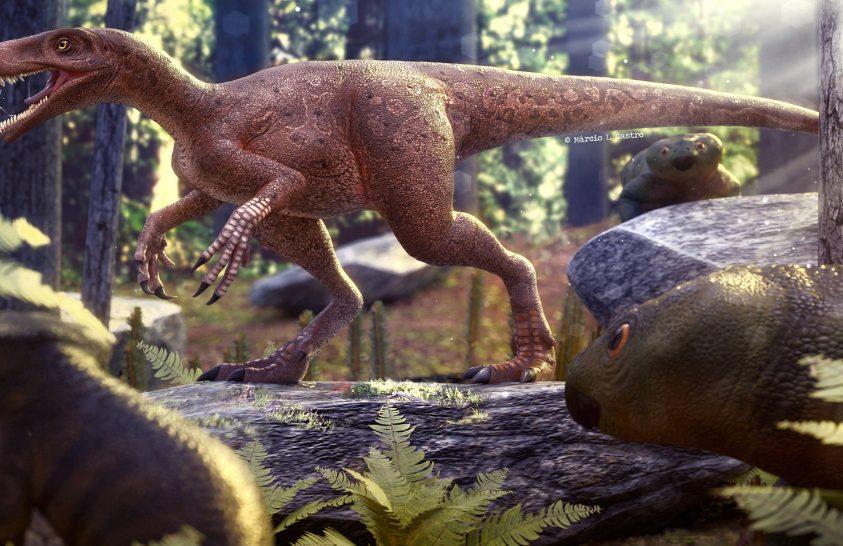 230 millió éve élt a legősibb ragadozó dinoszaurusz