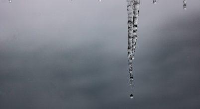 Gemenc télen – Olvadás