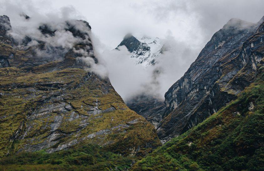 Gyarapodó növények a Mount Everest térségében