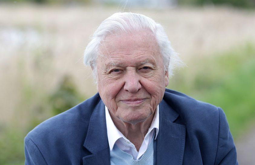 Sir David Attenborough ismét tettekre sarkall a klímaváltozás ügyében