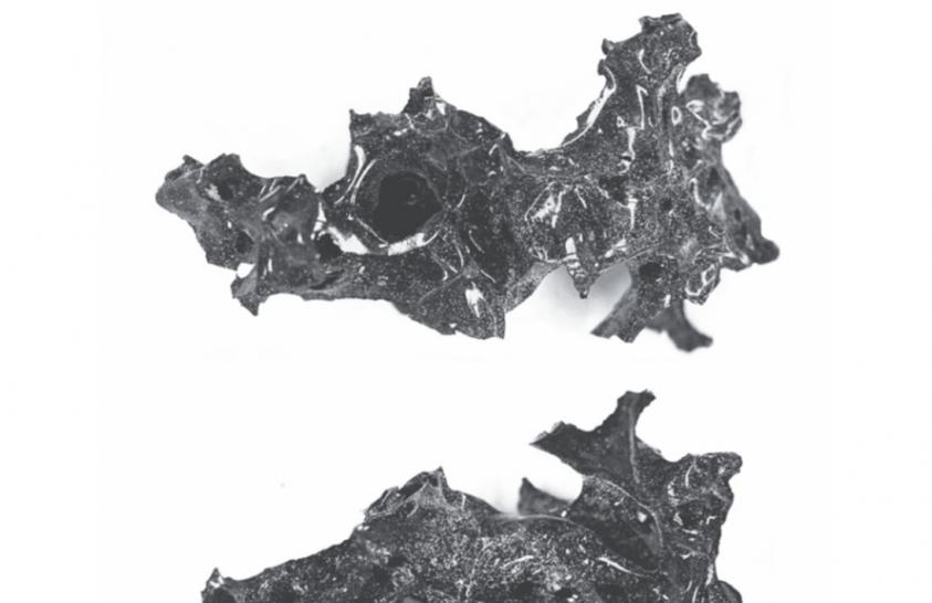 A Vezúv extrém pusztításának újabb bizonyítékára bukkantak
