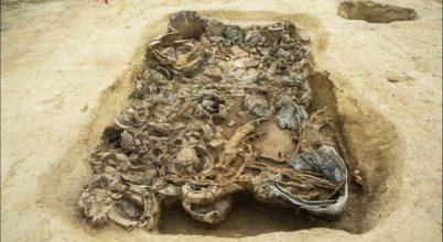 Harci szekeret találtak egy vaskori sírban