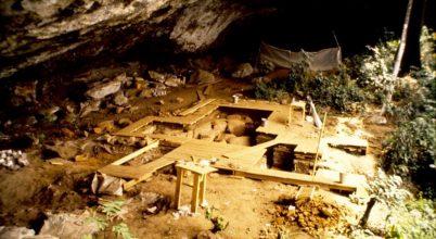 Ismeretlen afrikai populáció nyomait azonosították