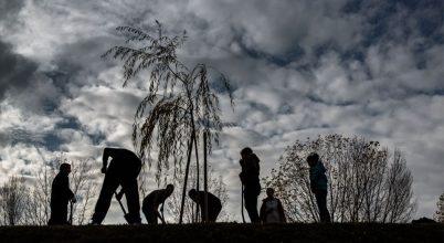 10 millió fa – Közösségi összefogás a klíma védelmében