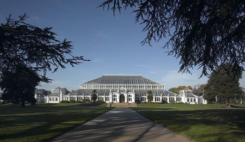 A Kew Gardens is tárolja az ausztráliai növények magjait