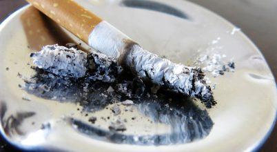 leszokni a dohányzásról, nem akar dolgozni Guzeeva Larisa leszokott a dohányzásról