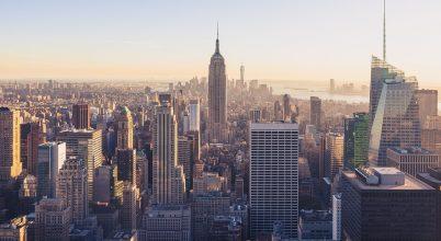 New York vándorpatkányainak génjeit vizsgálták