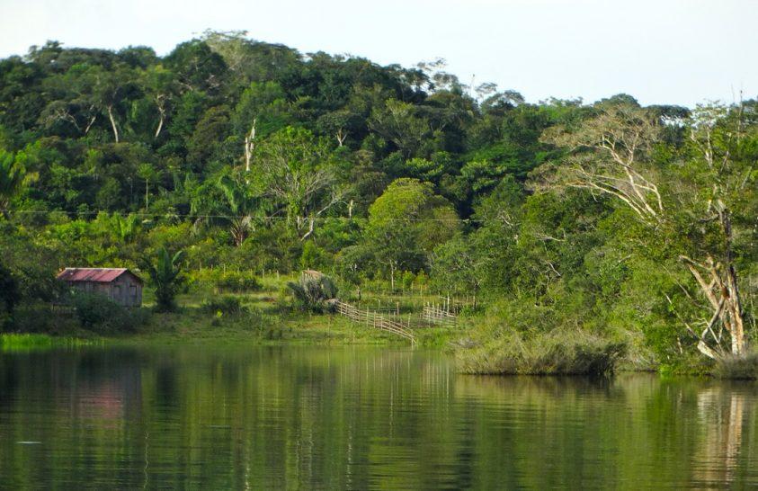 Szén-dioxid-kibocsátóvá válnak Amazónia egyes részei