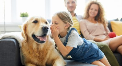 Emberi hangok felismerése a kutyák agyában