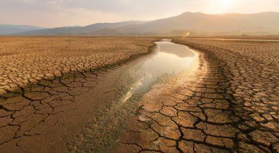 Mivel foglalkozik egy környezettörténeti kutató?