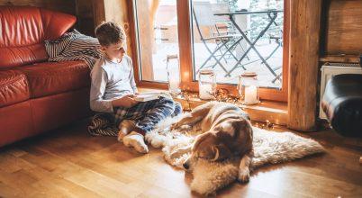 A rendszeresen könyvet olvasó gyerekek jobban teljesítenek az iskolában