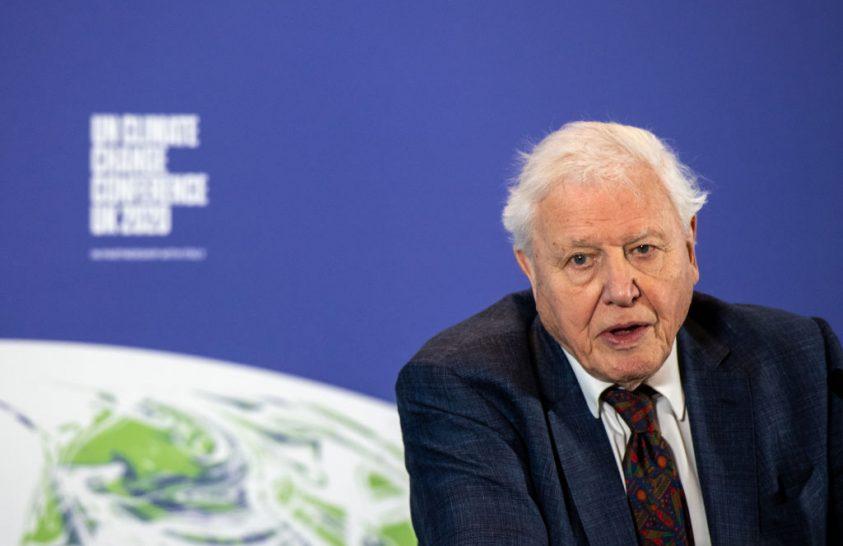 David Attenborough filmje is késik a járvány miatt