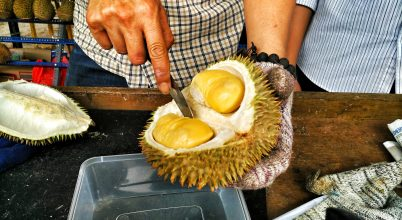 Mi okozza az indonéziai gyümölcs erős szagát?
