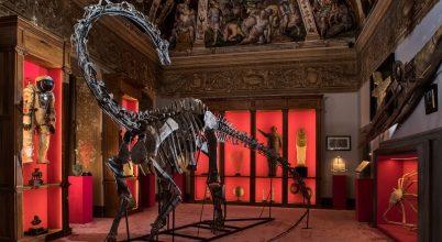 Dinoszaurusz szobadísznek?