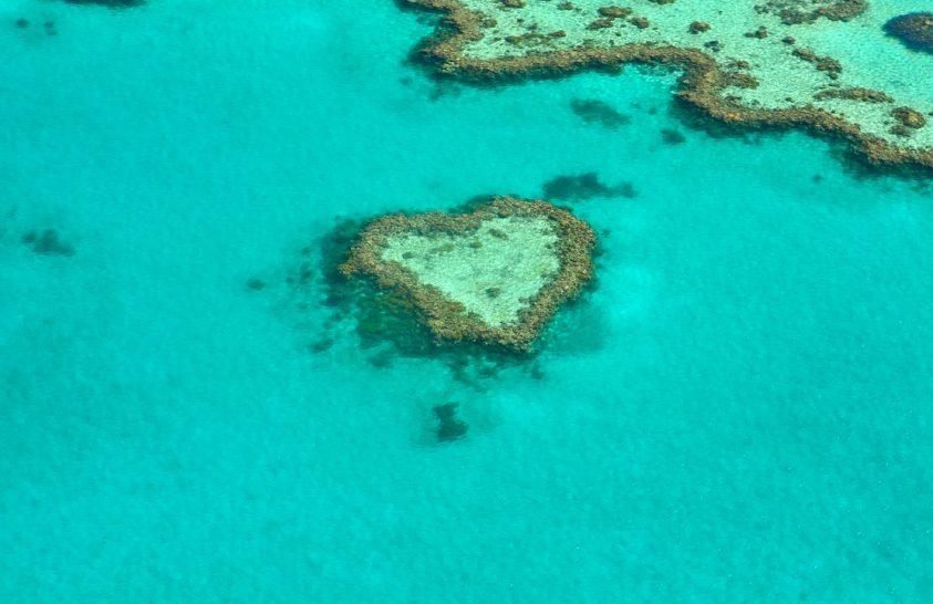 Továbbra is veszélyben van a Nagy-korallzátony