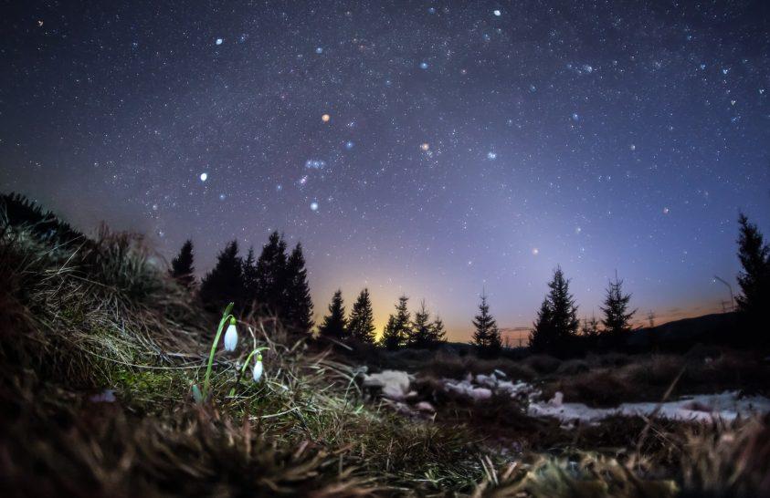 2020. március asztrofotója: Tavaszi csillagfényben