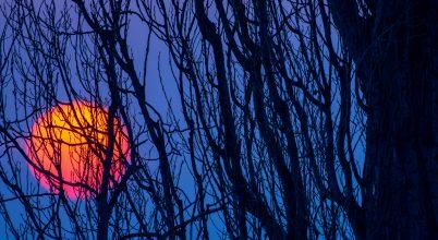 A nap képe: Kék és narancssárga