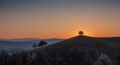 A nap képe: Napkeltészet