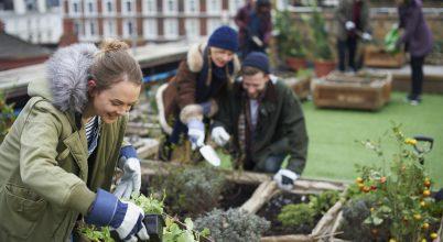 Kedvezően hat a szervezetre a kertészkedés