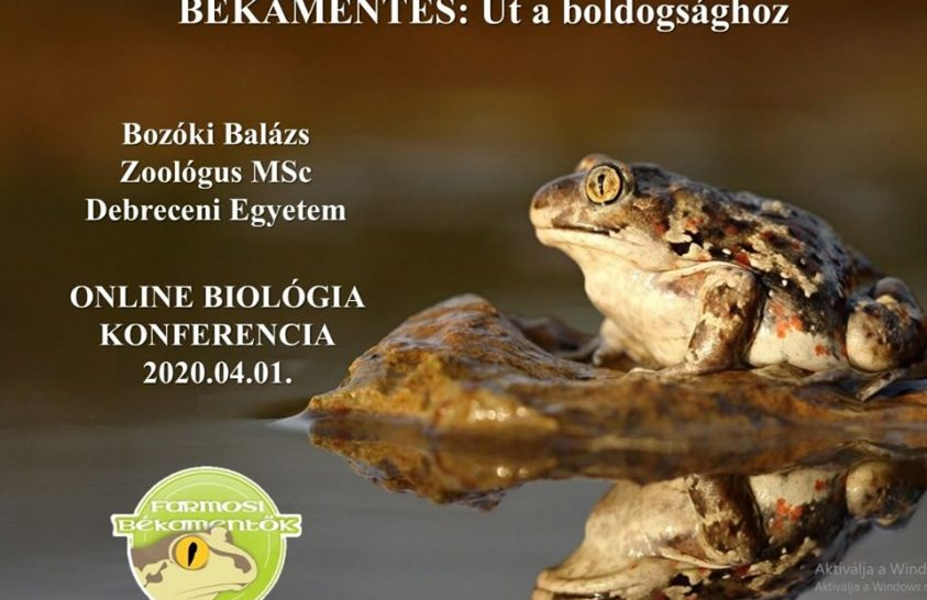 Élő biológiai konferencia helyett internetes előadások