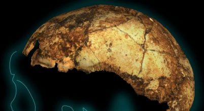 Egy gyermek koponyája lehet a Homo erectus legkorábbi lelete