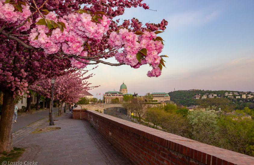 Budapest talán legszebb sétaútja