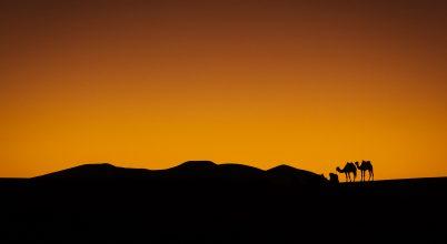 A nap képe: Ima naplementében