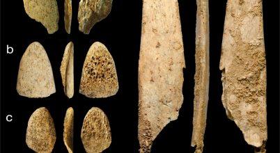 Gondosan válogatták az eszközalapanyagot a neandervölgyiek