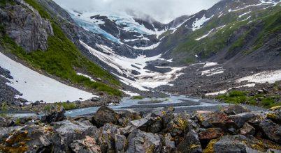 Mozgó mohagombócok az alaszkai gleccseren