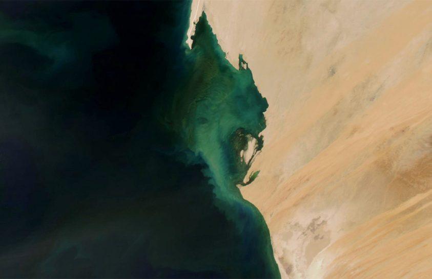 Állandó algamezők Mauritánia partjainál