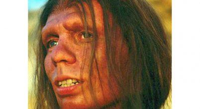 A neandervölgyi géneket hordozó nők termékenyebbek